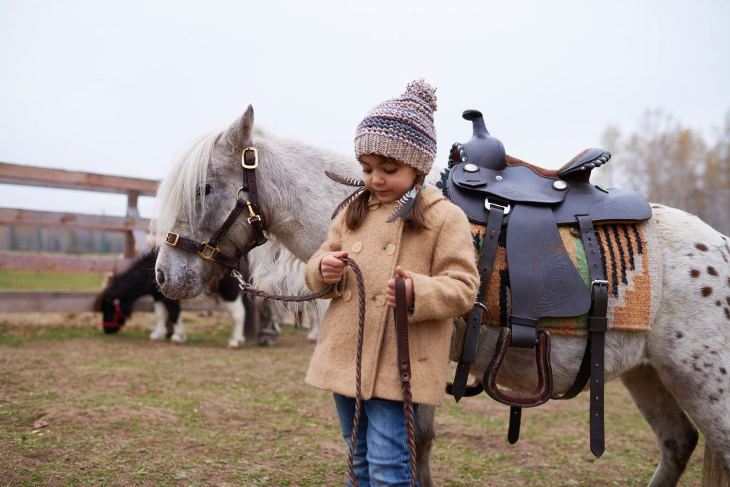 Child With Pony In Horse Paddock